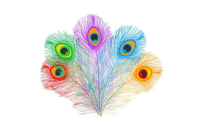 Pauwveren, vlakke stijl Recht en gebogen Blauwe gekleurde veren van exotische vogels royalty-vrije illustratie