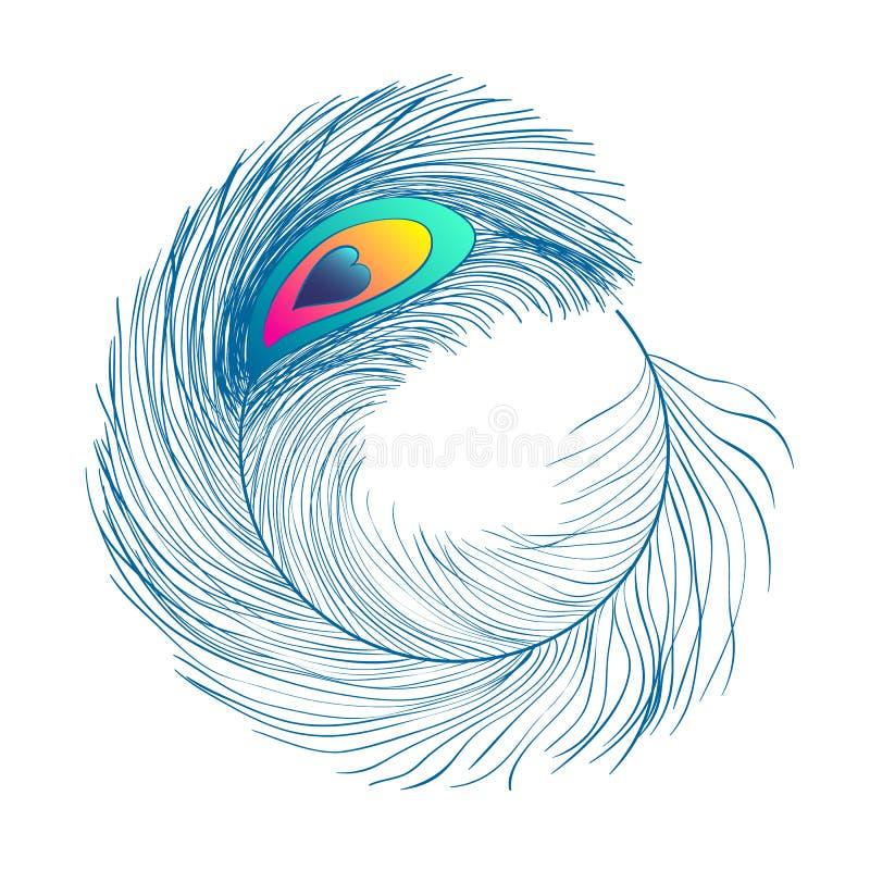 Pauwveren, vlakke stijl Recht en gebogen Blauwe gekleurde veren van exotische vogels vector illustratie