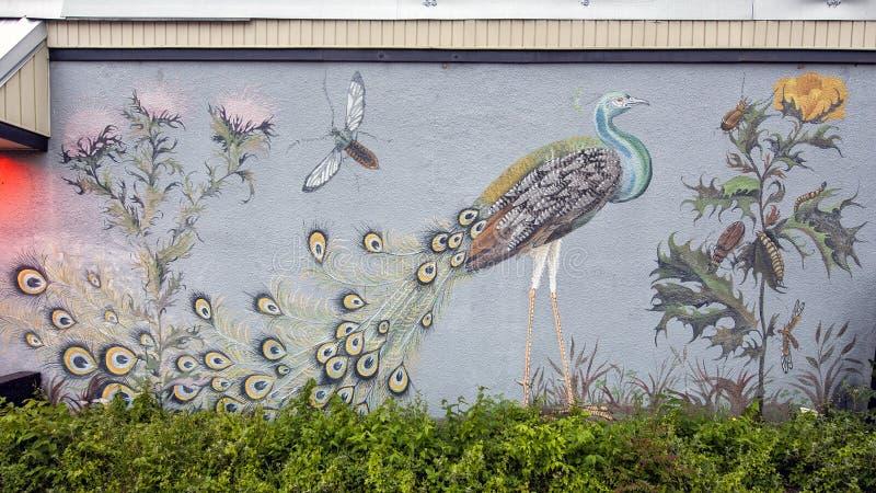 Pavão, flores e outros insetos do lado de um edifício em Oak Cliff, Texas fotos de stock