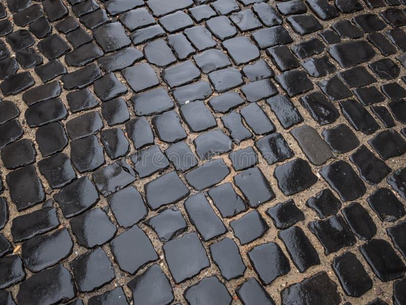 Pavé rond humide du trottoir après pluie photographie stock libre de droits
