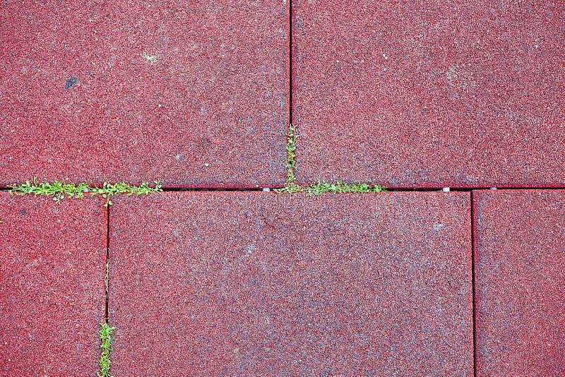 Pavés et herbe image stock