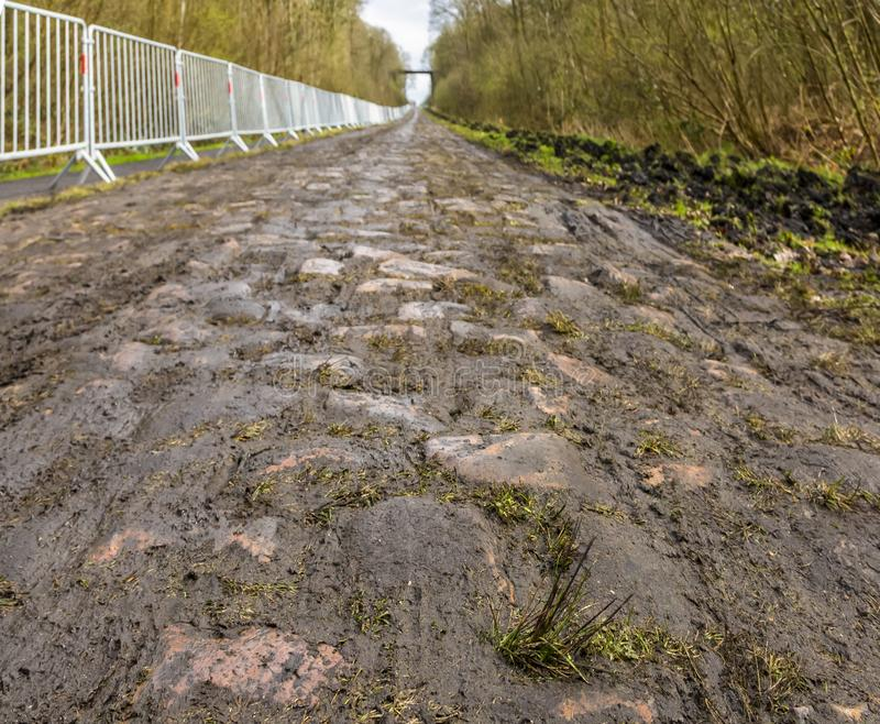 Pave d`Arenberg royalty free stock image