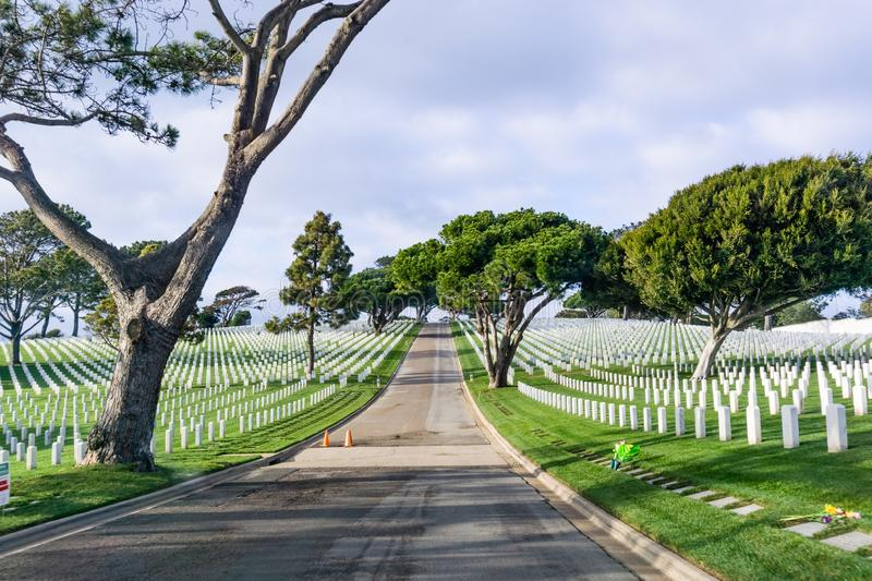 Paved alley going through a national military cemetery royalty free stock photo