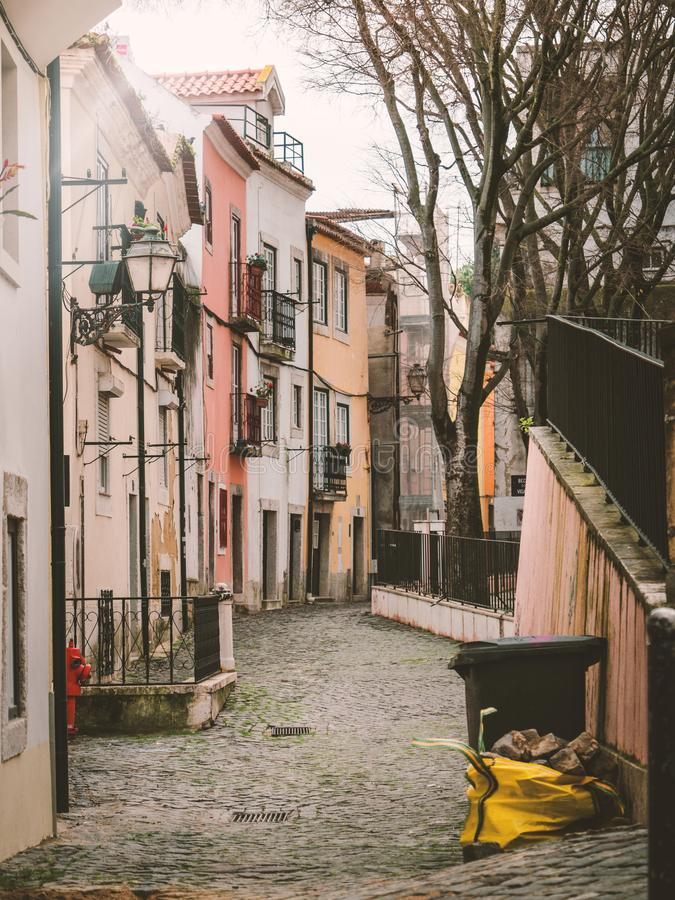 Paved narrow street in cold season. Perspective view of cobblestone narrow street with old residential houses and bare trees in Lisbon, Portugal royalty free stock image