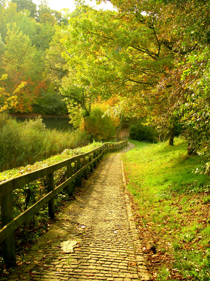 Paved park paths royalty free stock photo