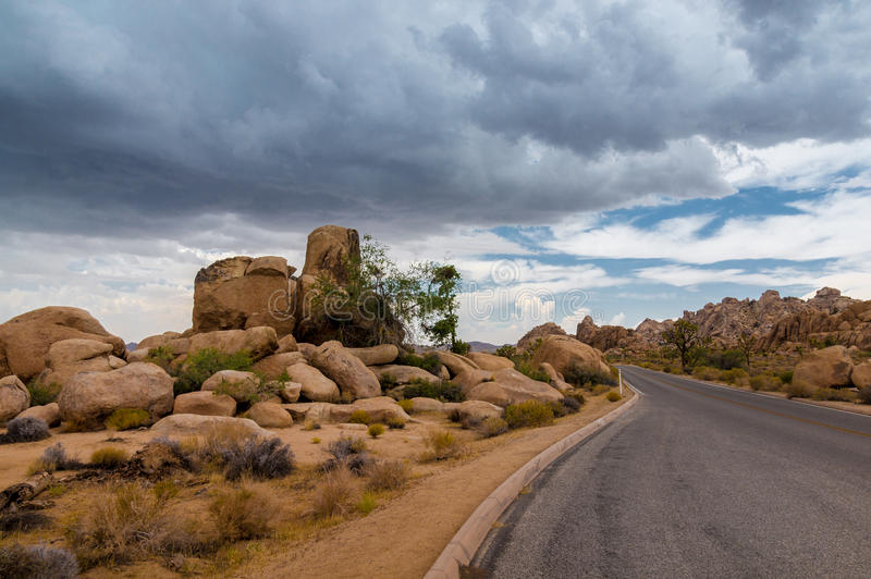 Paved Road at Joshua Tree National Park stock images