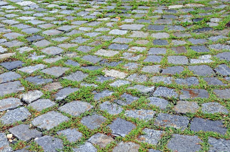 Grass growing between sett stones. Pavement of granite sett stones, growth of weed and grass between pavers royalty free stock image