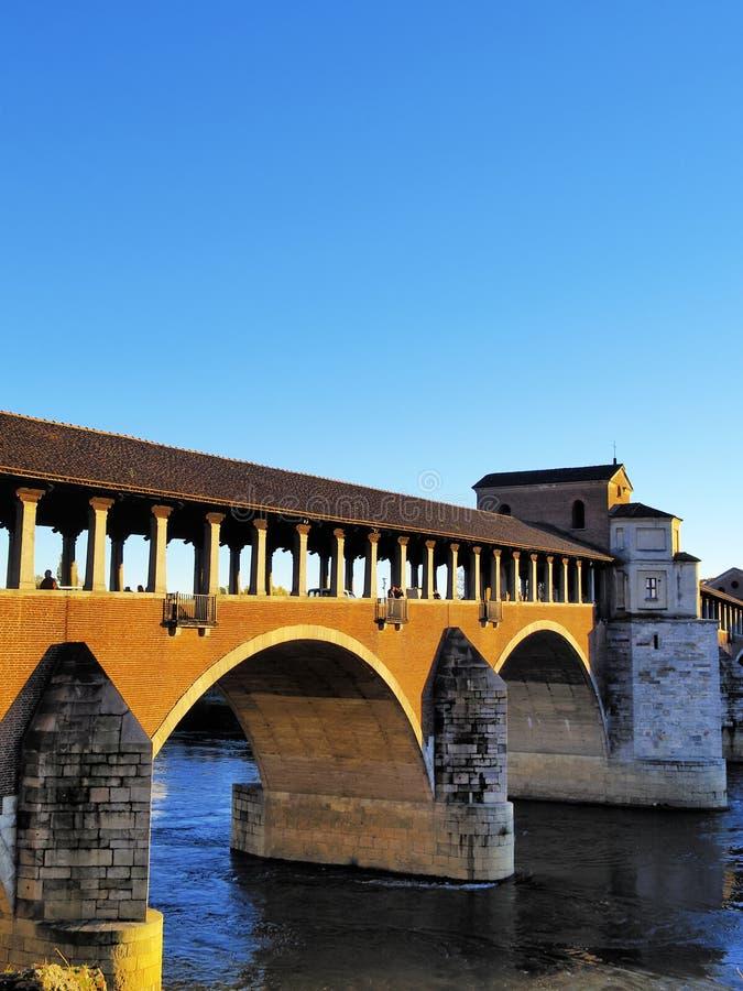 Pavia imagem de stock
