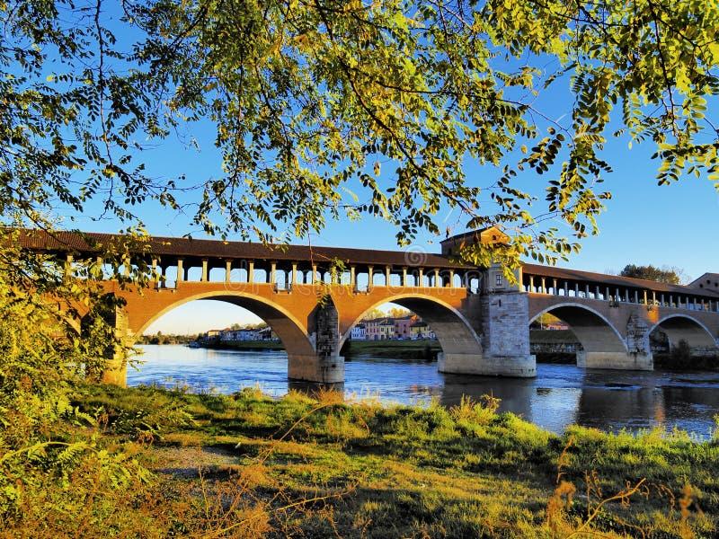 Pavia imagem de stock royalty free