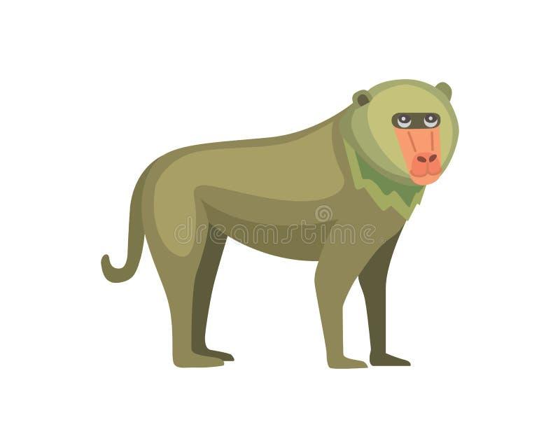 Pavianaffe-Karikaturillustration wild lebende Tiere von Afrika lizenzfreie abbildung