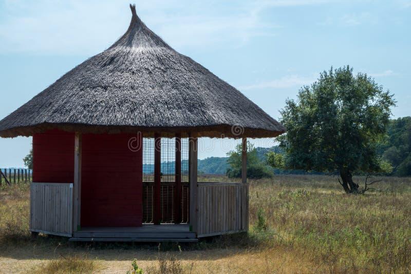 Pavilhão cobrido com sapê do telhado imagens de stock royalty free