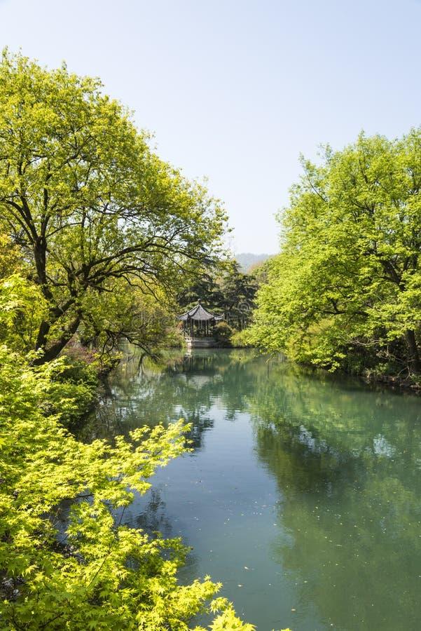 Pavilhão da margem e árvore verde fotografia de stock royalty free