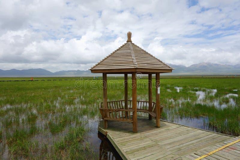 Pavilhão nos pantanais imagens de stock royalty free