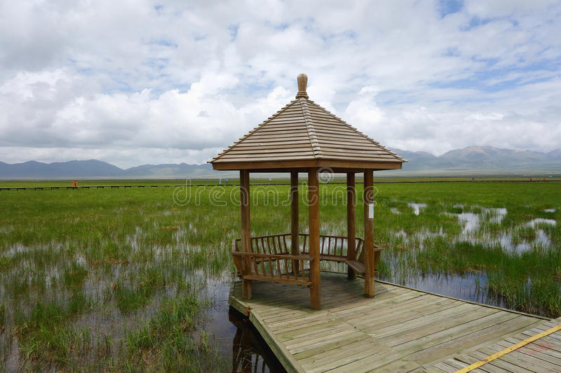 Pavilion in Wetlands royalty free stock images
