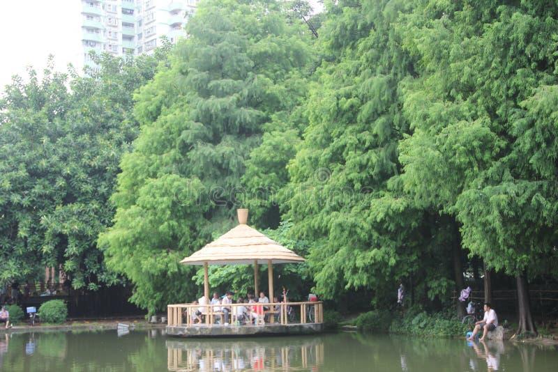 Paviljongen på kanten av dammet i SHENZHENEN LIZHI parkerar arkivbild