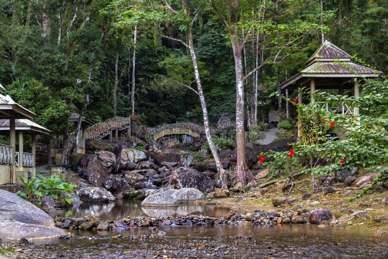 Paviljonger för att koppla av med broar på bankerna av en bergström med stenar i rainforesten arkivfoton