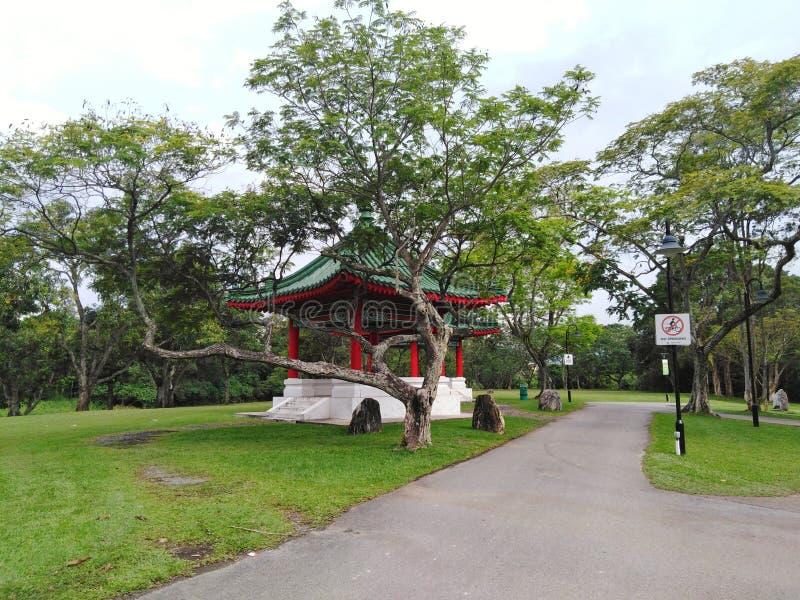 Paviljonger och bana i den kinesiska trädgården singapore royaltyfria bilder