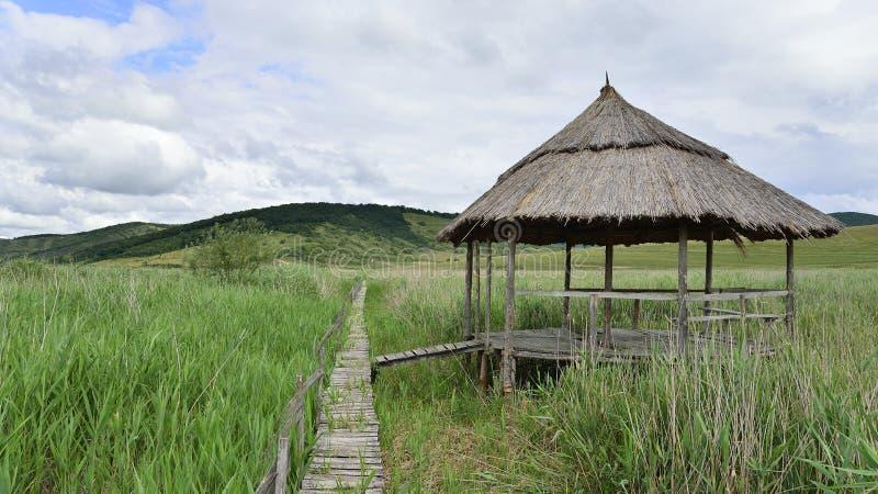 Pavillion et pont en bois par la réservation naturelle tubulaire de sic photographie stock libre de droits
