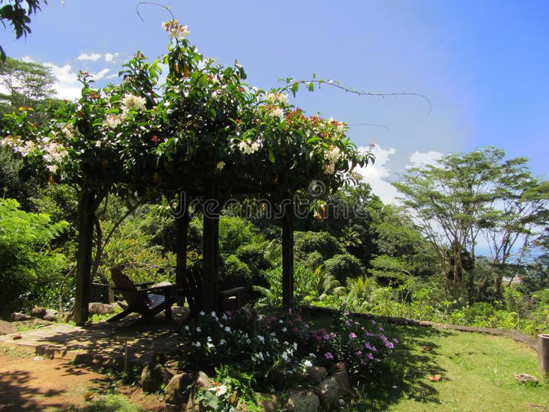 Pavillion with flowers on the Seychelles. Pavillion in the Le Jardin du Roi, a spice garden on Seychelles island Mahe stock image