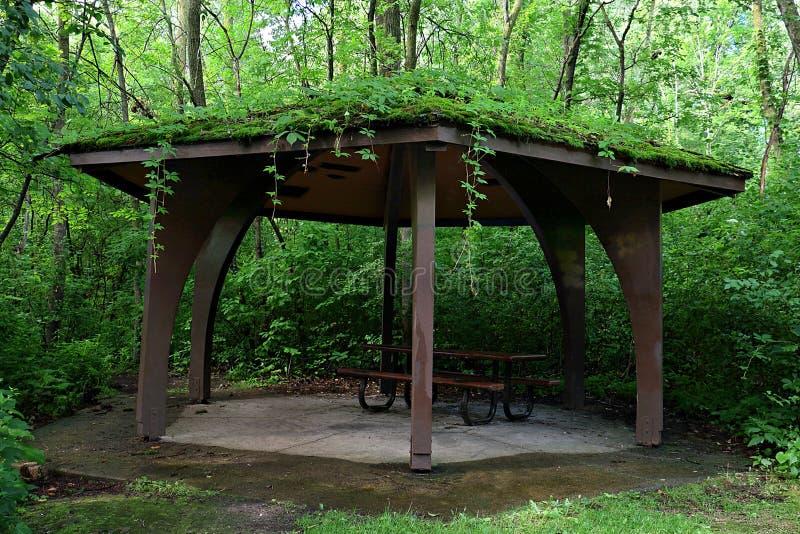 Pavillon de pique-nique avec le toit vivant image stock