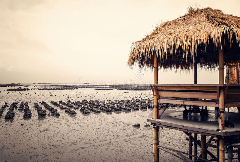 Pavillon en bambou images libres de droits