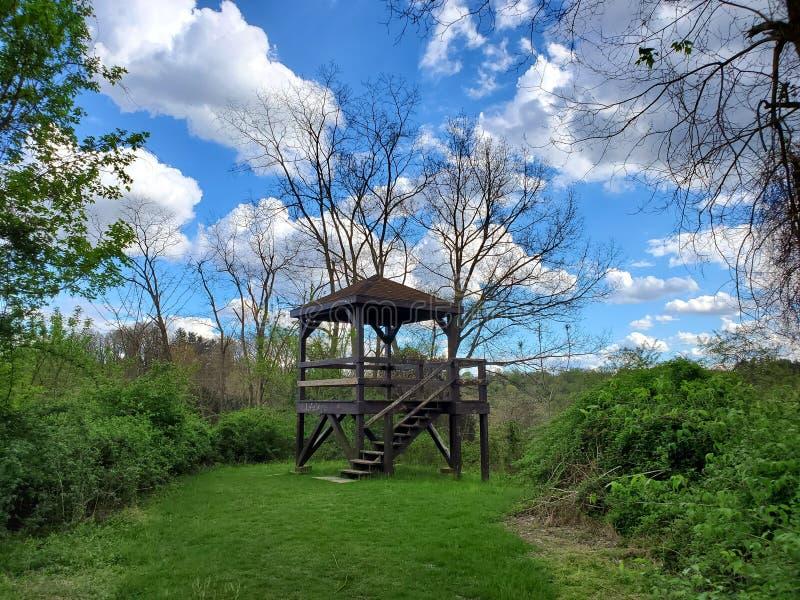 Pavillon im Wald stockfoto