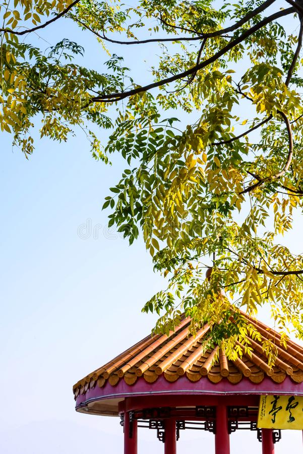 Pavillon sous les feuilles d'automne image libre de droits