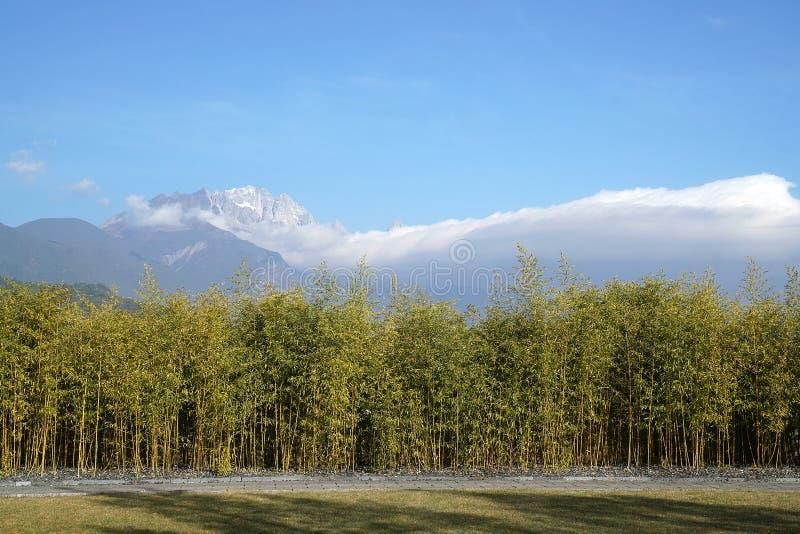 Pavillon und Jade Dragon Snow Mountain lizenzfreie stockbilder