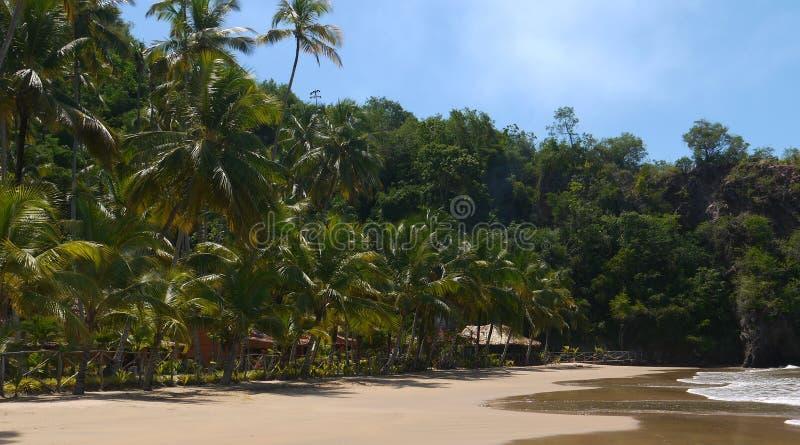 Pavillons à la plage tropicale image libre de droits