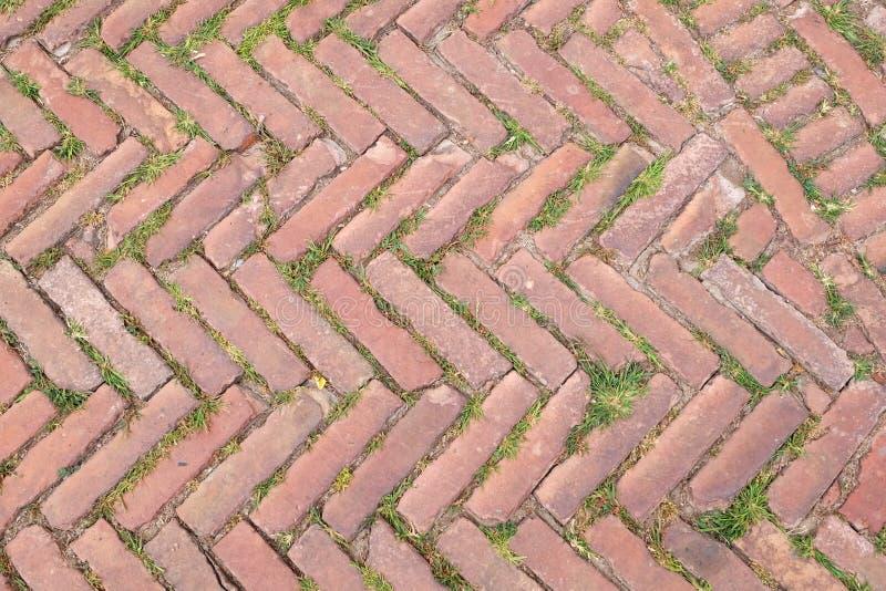 Pavimentação de Toscânia imagens de stock