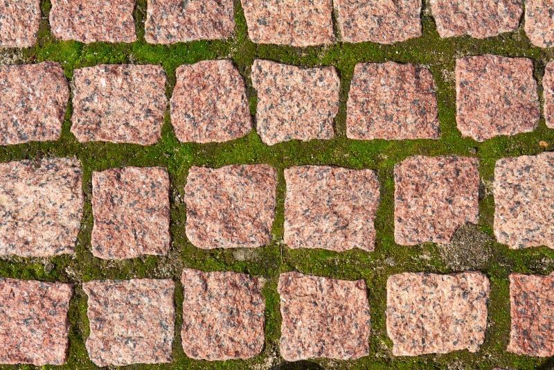 Pavimentadoras del granito con la hierba foto de archivo