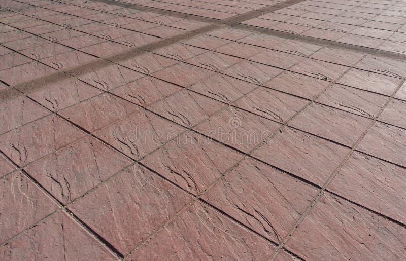 Pavimentazione all'aperto stampata del pavimento di calcestruzzo fotografie stock libere da diritti