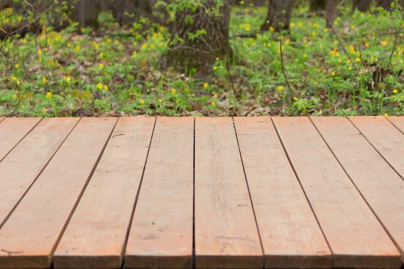 Pavimentazione di legno in un parco immagini stock libere da diritti