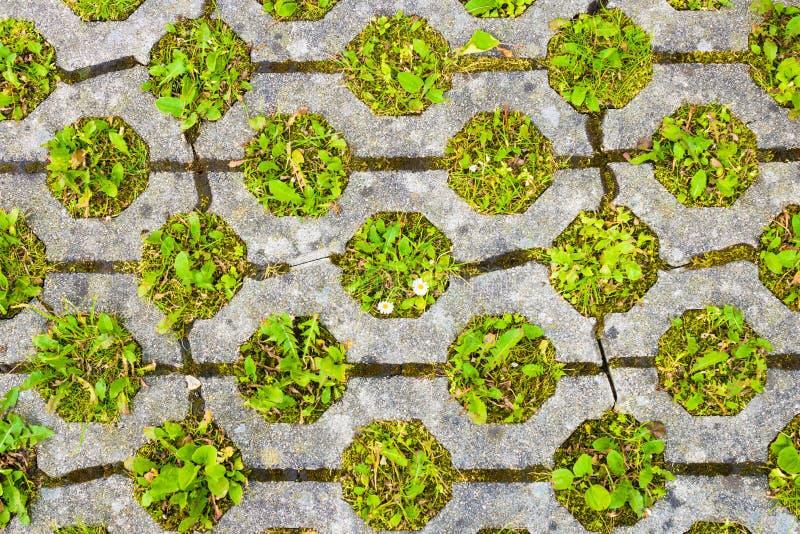 Pavimentazione permeabile con erba Parcheggio amichevole di Eco fotografia stock libera da diritti