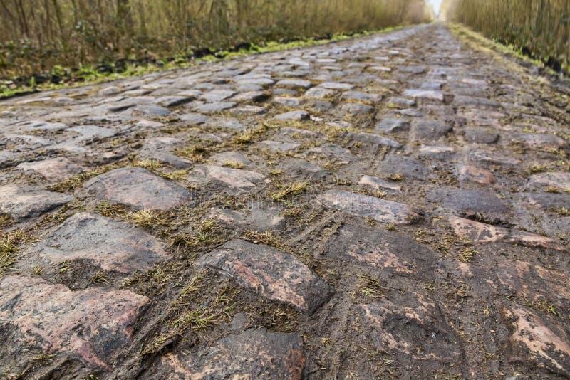 Pavimente el ` Arenberg de d imagen de archivo