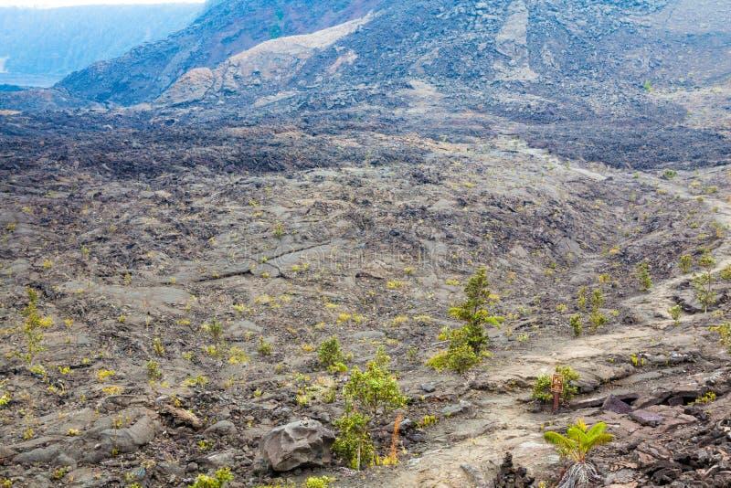Pavimento del cratere fotografia stock libera da diritti