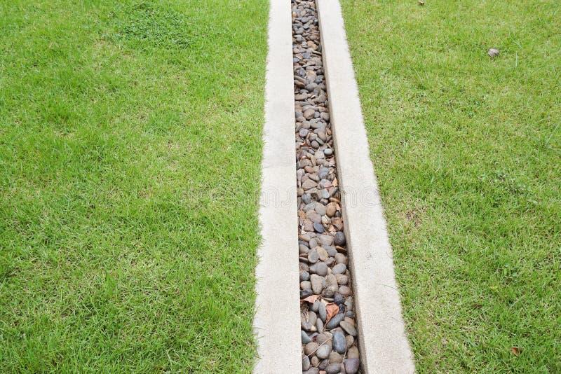 Pavimento dell'erba nel giardino della natura fotografia stock