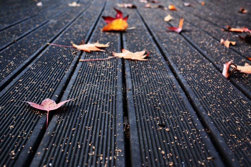 Pavimento della piattaforma con le foglie di autunno immagine stock libera da diritti