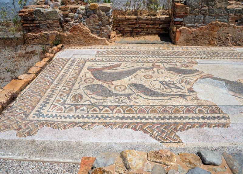 Pavimento di mosaico alle rovine di Milreu, Estoi, Algarve, Portogallo fotografie stock libere da diritti
