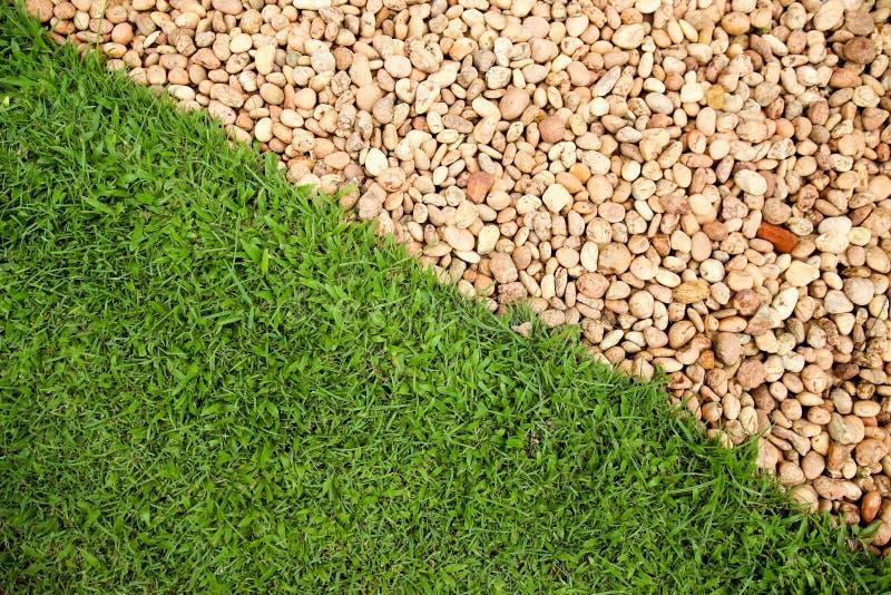 Pavimento di verde di erba del campo fotografia stock libera da diritti