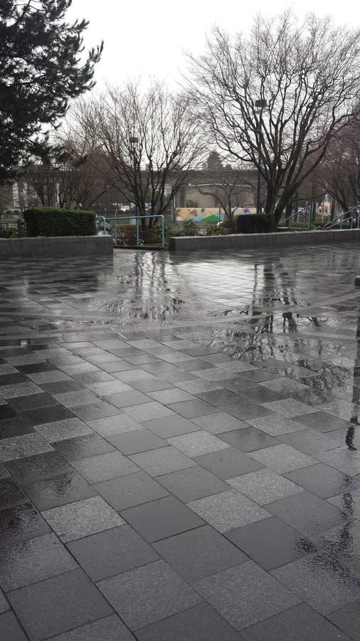 Pavimento mojado fotografía de archivo