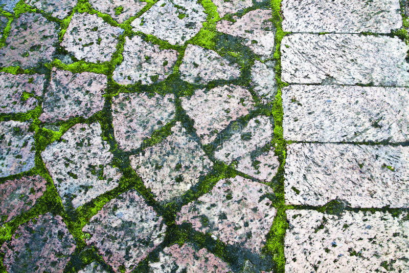 Download Paving with moss stock image. Image of flat, circle, blocks - 25679305