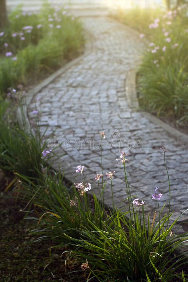 Paving stone road royalty free stock photography
