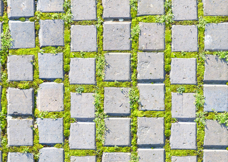 Paving Stone Style With Grass Seamless Pattern Stock Image