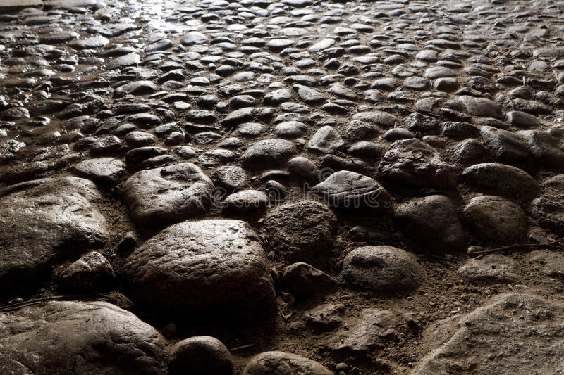 Paving stones. Lighted by the evening sun stock photos