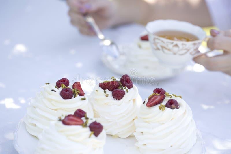 Pavlova se apelmaza con las bayas poner crema y frescas del verano Tortas de Pavlova fotos de archivo libres de regalías