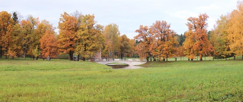 Pavlovsk park przy jesienią panorama obraz stock