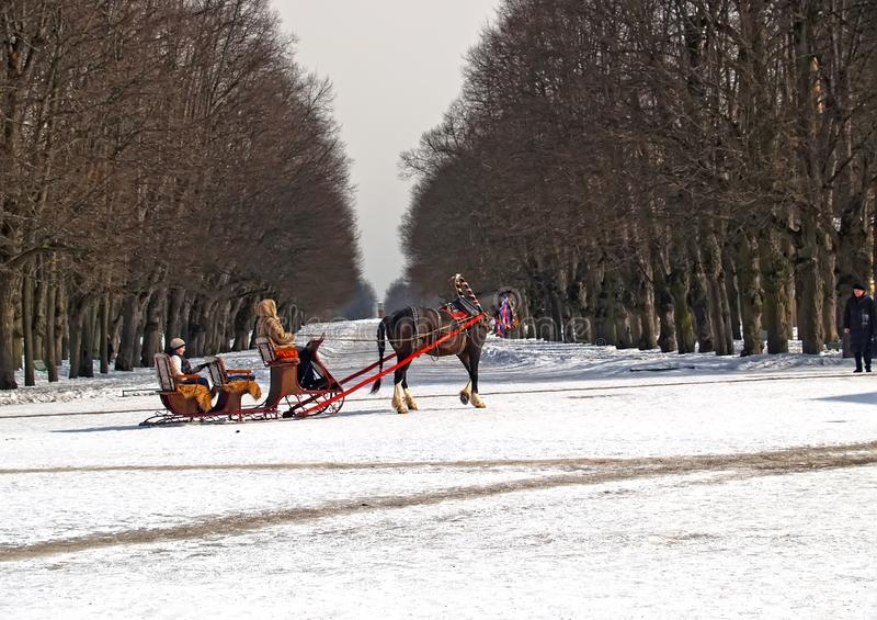 Pavlovsk, Rusia Conducción de niños en trineo en la avenida del parque del invierno fotografía de archivo libre de regalías