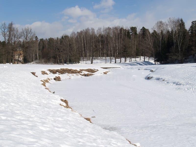 Pavlovsk, Rusia En parque del invierno imagenes de archivo