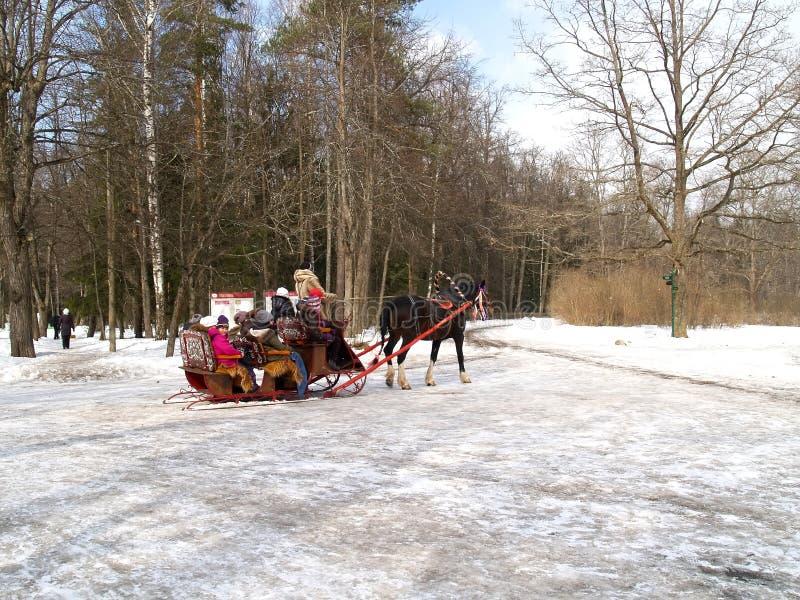 Pavlovsk, Rusia Los niños montan en trineo en la avenida del parque del invierno fotos de archivo